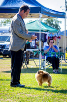 2015-08-01: Isis District Canine Club