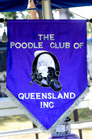 2016-03-06: Poodle Club of Qld
