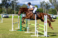 Some of the horses competing at the Kilcoy Show.
