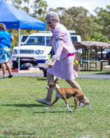 2014-09-14: Hervey Bay KC