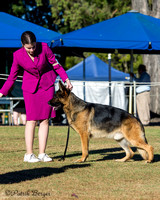 2014-07-27: Ladies Kennel Assoc of Qld